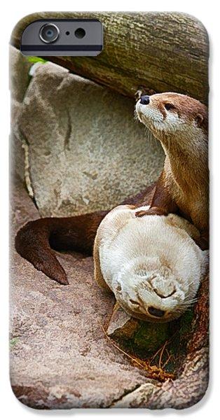 Otter Digital Art iPhone Cases - Doctor Otter at the Western North Carolina Nature Center iPhone Case by John Haldane