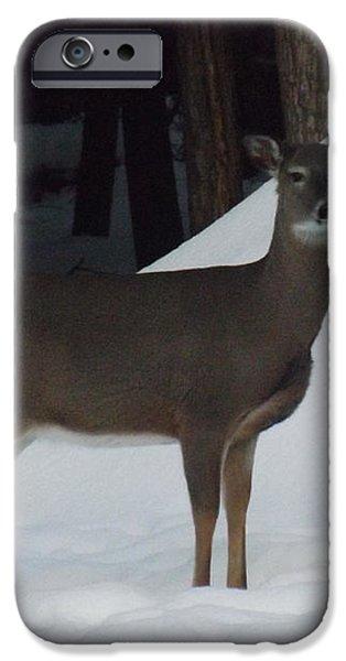Doe a Deer iPhone Case by Brenda Brown