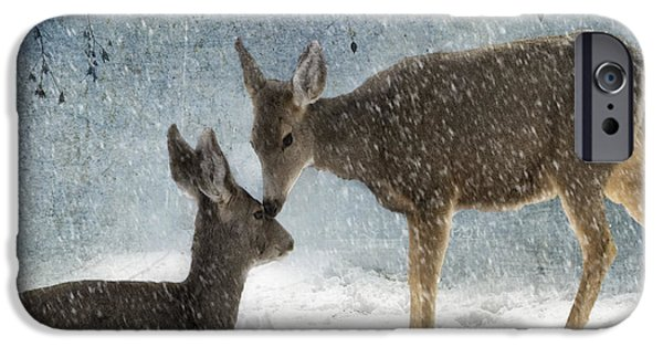 Wild Animals Photographs iPhone Cases - Doe a Deer iPhone Case by Juli Scalzi