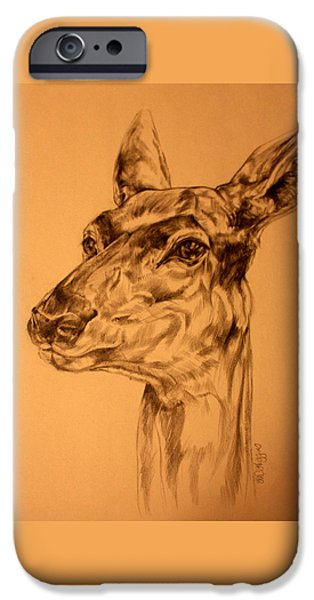 Nature Study Drawings iPhone Cases - Doe sketch iPhone Case by Derrick Higgins
