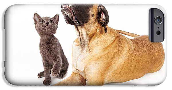 Mastiff Dog iPhone Cases - Dog and cat looking at a bird iPhone Case by Susan  Schmitz