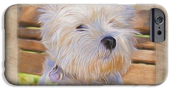 Scottish Terrier Digital Art iPhone Cases - Dog Art - Just One Look iPhone Case by Jordan Blackstone