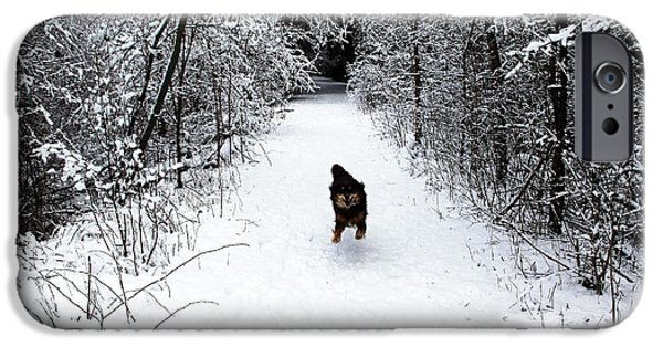 Snow iPhone Cases - Dog Heaven iPhone Case by Debbie Oppermann