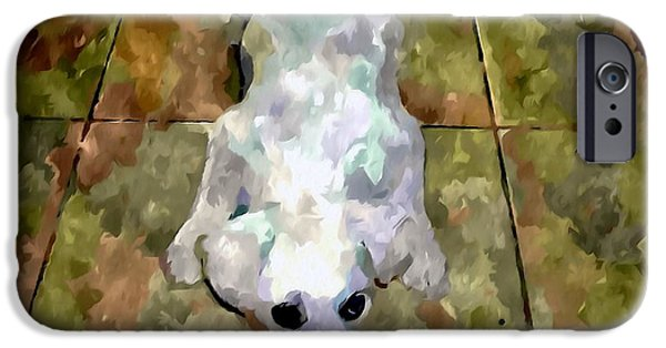 Dog Close-up Paintings iPhone Cases - Dog lying on floor  iPhone Case by Lanjee Chee