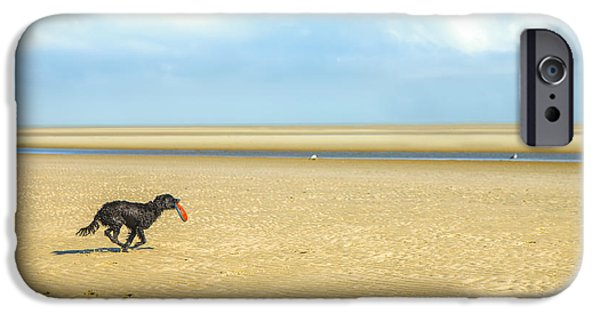 Dog Running. iPhone Cases - Dog running on a Beach iPhone Case by Diane Diederich