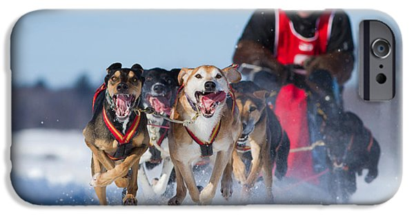 Husky iPhone Cases - Dog sledding race iPhone Case by Mircea Costina Photography