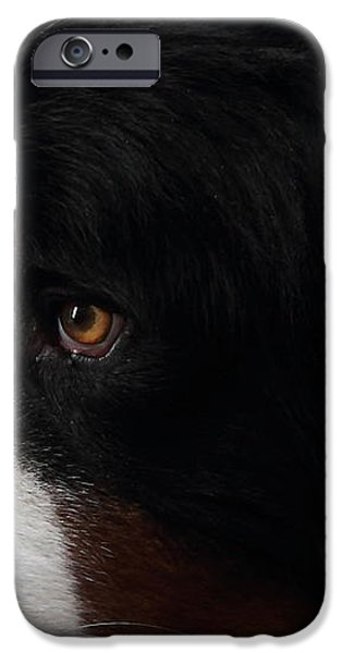 Dog iPhone Case by Wingsdomain Art and Photography
