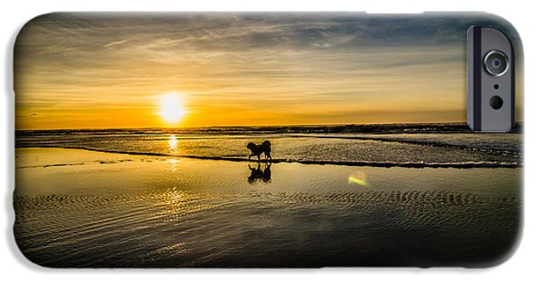 Pet Photography iPhone Cases - Doggy Sunset iPhone Case by Puget  Exposure