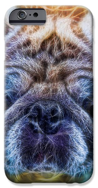 Dogs - The Psychedelic Fantasy Pug iPhone Case by Lee Dos Santos