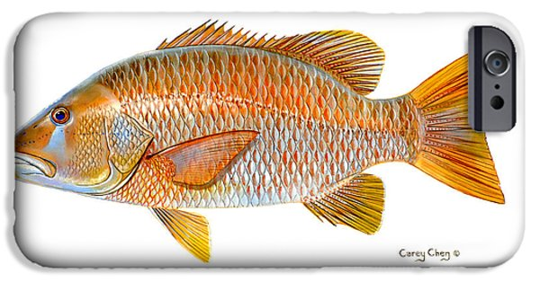 Islamorada iPhone Cases - Dogtooth Snapper iPhone Case by Carey Chen