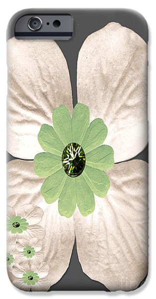 Multimedia iPhone Cases - Dogwood Blossoms iPhone Case by Tina M Wenger