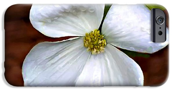 Cathedral Rock iPhone Cases - Dogwood Blossom Yosemite iPhone Case by  Bob and Nadine Johnston