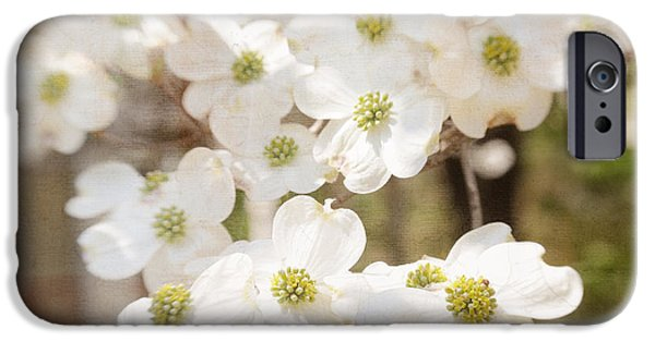 Blooming Pyrography iPhone Cases - Dogwood iPhone Case by Ilze Lucero