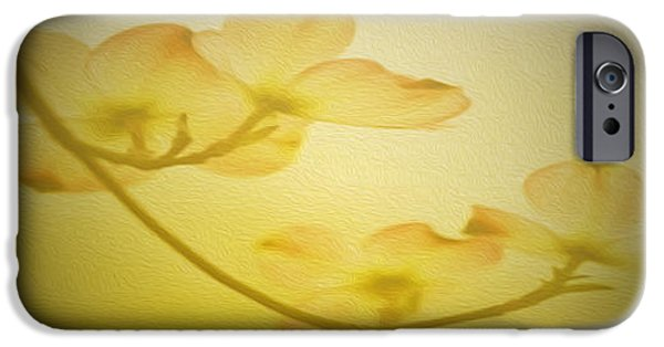 Young iPhone Cases - Dogwood Moon Painting iPhone Case by Cheryl Young