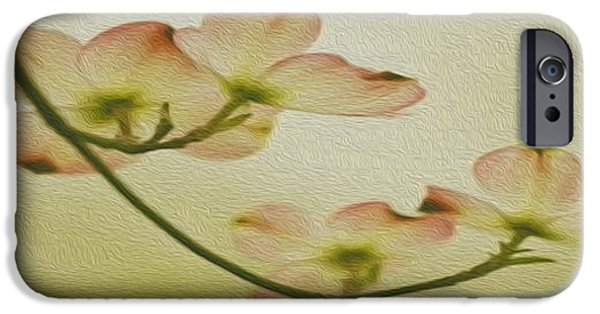 Young iPhone Cases - Dogwood Panoramic iPhone Case by Cheryl Young
