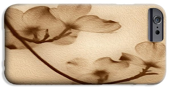 Young iPhone Cases - Dogwood Panoramic Sepia iPhone Case by Cheryl Young