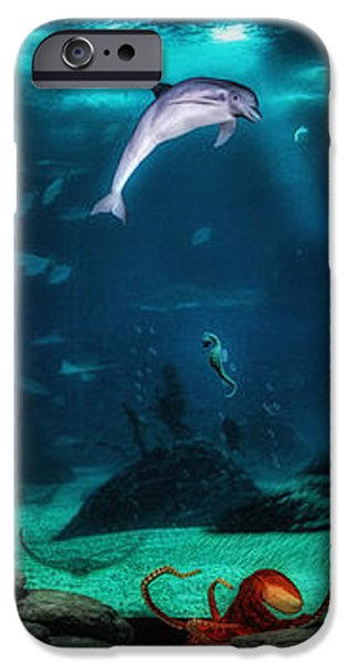 Dolphin Tails 2 iPhone Case by Todd and candice Dailey