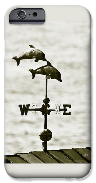 Dolphins Weathervane In Sepia iPhone Case by Ben and Raisa Gertsberg