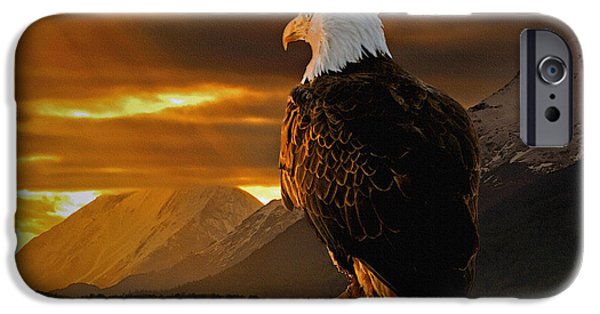 Vistas iPhone Cases - Domain iPhone Case by Ron Day
