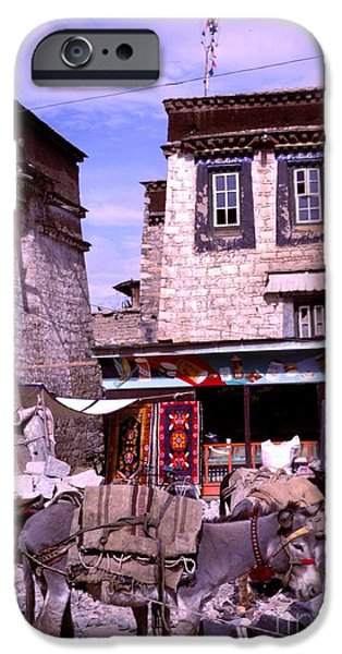 Tibetan Buddhism iPhone Cases - Donkeys in Jokhang Bazaar iPhone Case by Anna Lisa Yoder