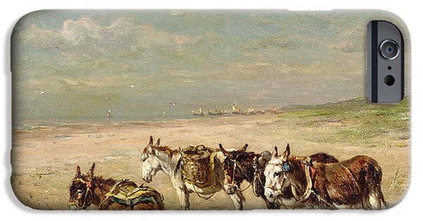 Donkey iPhone Cases - Donkeys on the Beach iPhone Case by Johannes Hubertus Leonardus de Haas