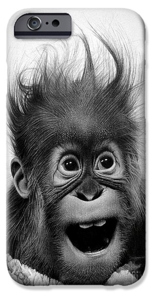 Animal Drawings iPhone Cases - Dont panic iPhone Case by Miro Gradinscak