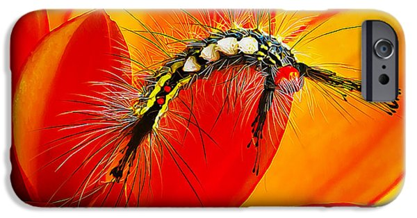 Close Up Floral iPhone Cases - Dont Touch iPhone Case by Bill Caldwell -        ABeautifulSky Photography