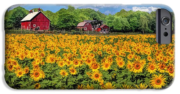 Sunflower Field iPhone Cases - Door County Field of Sunflowers Panorama iPhone Case by Christopher Arndt