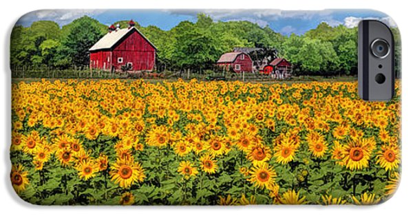 Farm Fields Paintings iPhone Cases - Door County Field of Sunflowers Panorama iPhone Case by Christopher Arndt