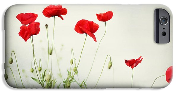 Print Photographs iPhone Cases - Dorothy iPhone Case by Amy Tyler