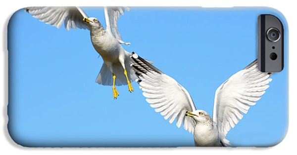 Seagull iPhone Cases - Double Decker 3 iPhone Case by Fraida Gutovich