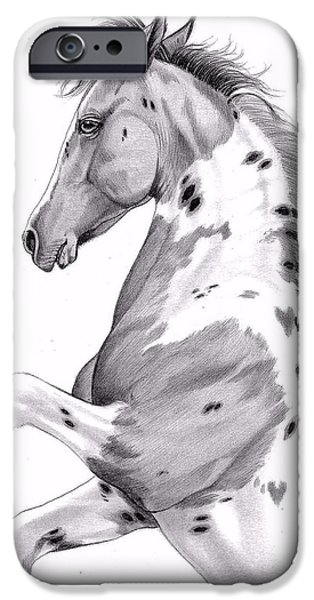 Drawing Of A Horse iPhone Cases - Double Hearts Dandy iPhone Case by Cheryl Poland