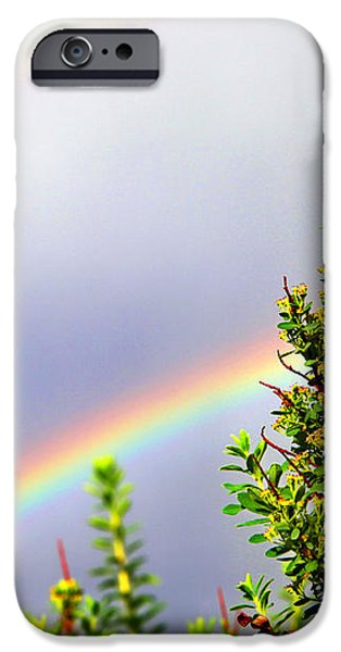 Double Rainbow Sky iPhone Case by Destiny  Storm