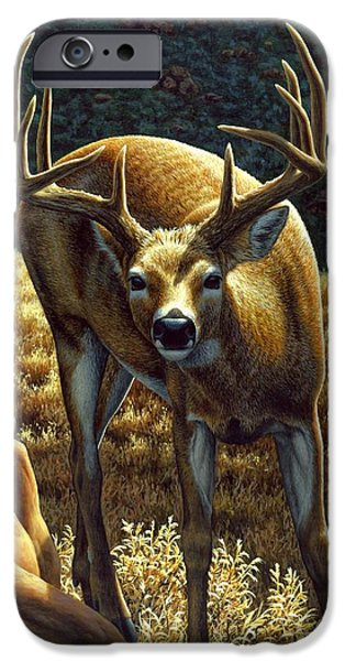Wild Animals iPhone Cases - Whitetail Buck - Double Take iPhone Case by Crista Forest