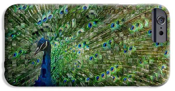 Peafowl iPhone Cases - Double Vision iPhone Case by Jack Zulli