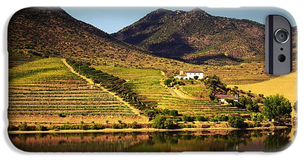 Viticulture iPhone Cases - Douro Landscape IV iPhone Case by Carlos Caetano