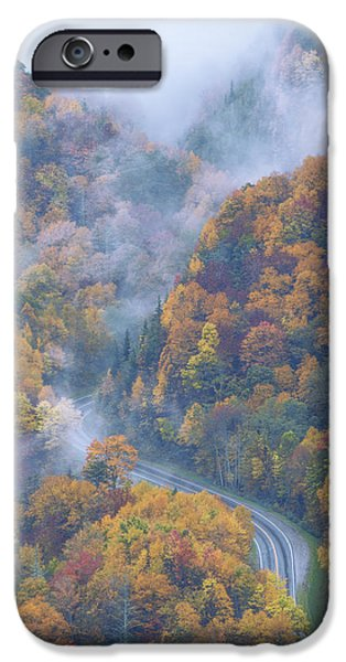 Autumn Season iPhone Cases - Down Below iPhone Case by Chad Dutson