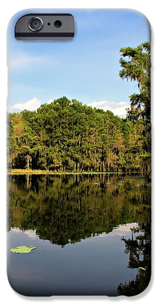 Down In The Bayou iPhone Case by Lana Trussell
