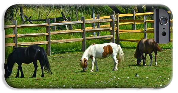 Horse Bit iPhone Cases - Down on the Ranch iPhone Case by Frozen in Time Fine Art Photography