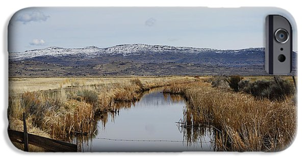 Creek Photographs iPhone Cases - Down the Creek iPhone Case by Rebecca Cozart