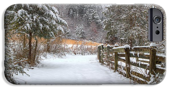 Winter Scene iPhone Cases - Down The February Lane iPhone Case by Michael Eingle