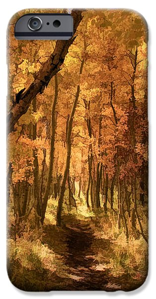 Down the Golden Path iPhone Case by Donna Kennedy