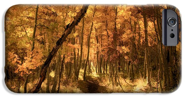 Fall iPhone Cases - Down the Golden Path iPhone Case by Donna Kennedy