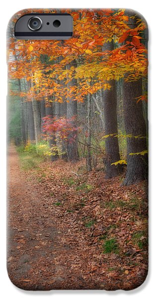 Down The Trail iPhone Case by Bill  Wakeley