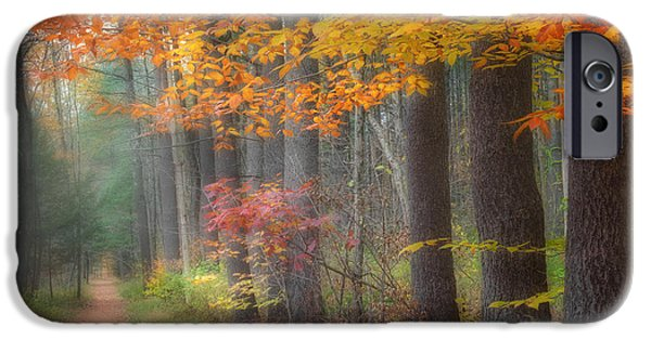 Litchfield County Landscape iPhone Cases - Down The Trail Square iPhone Case by Bill  Wakeley