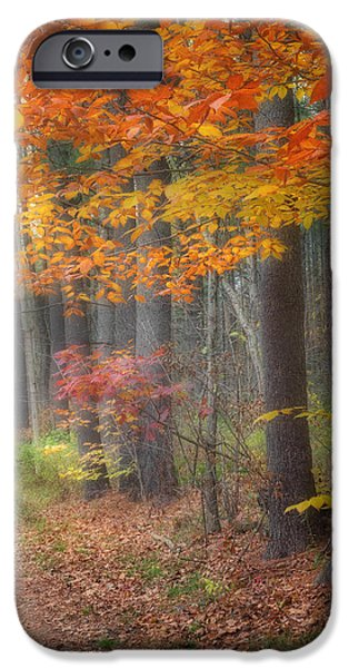 Down The Trail Square iPhone Case by Bill  Wakeley