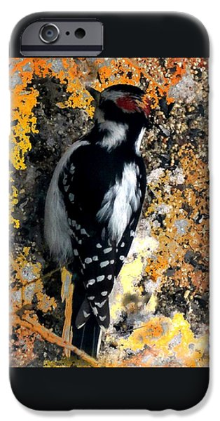 Log Cabin Digital iPhone Cases - Downy Woodpecker iPhone Case by Mike Breau