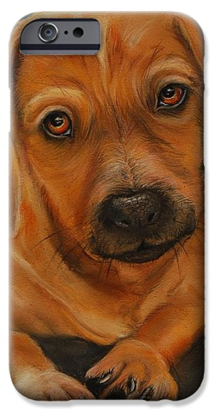 Small Pastels iPhone Cases - Doxie iPhone Case by Jean Cormier