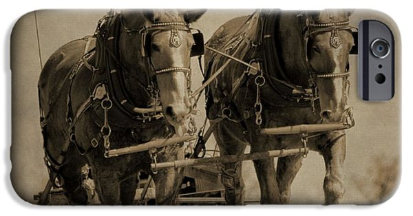 The Horse iPhone Cases - Draft Horses iPhone Case by Dan Sproul