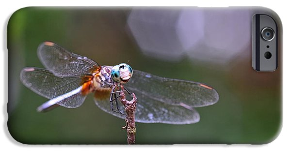 Dragonfly iPhone Cases - Dragonfly Eyes Intruder iPhone Case by Wayne Nielsen